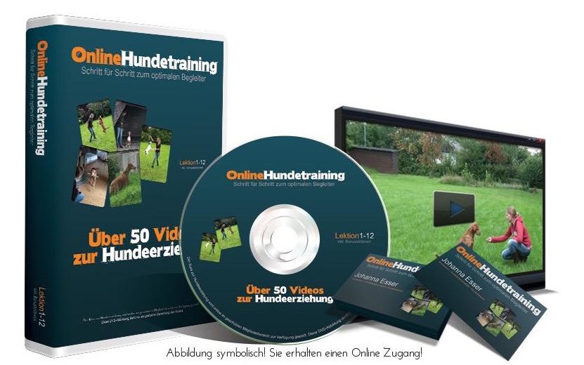 online-hundetraining-paket